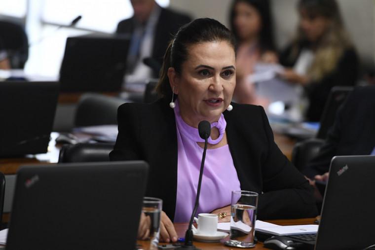 Senadora Kátia Abreu votou favorável à proposta no Senado Federal