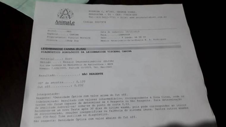 Exame feito pela clínica particular