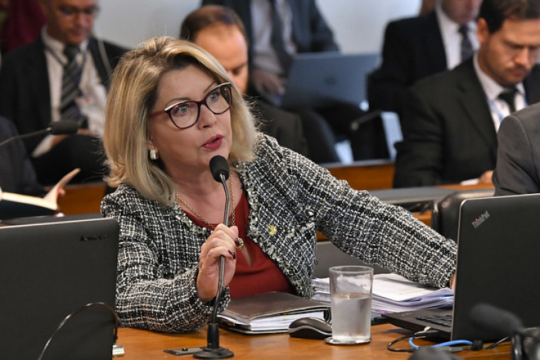 Relatora da matéria na comissão, a senadora Juíza Selma (PSL-MT)