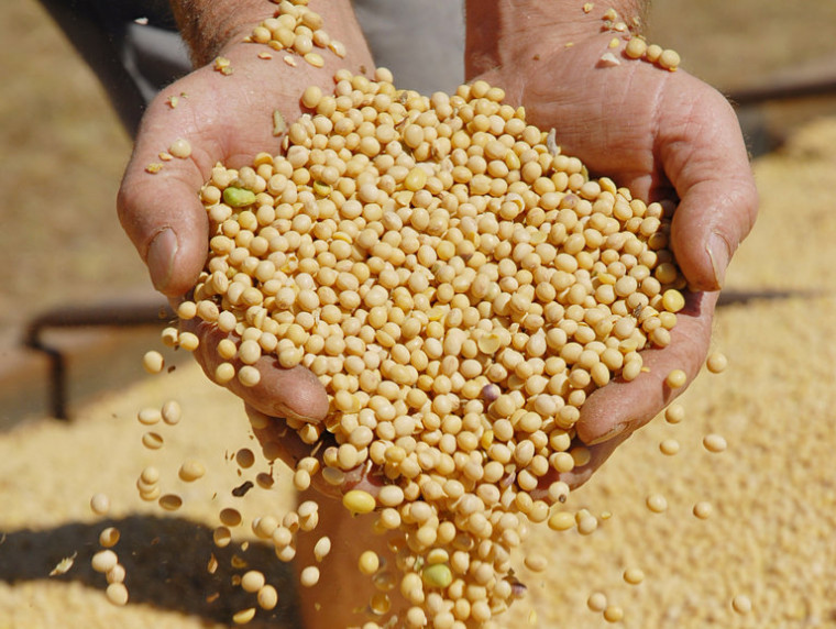O projeto de criação da Agrotins coincidiu com o começo da produção de soja no Tocantins