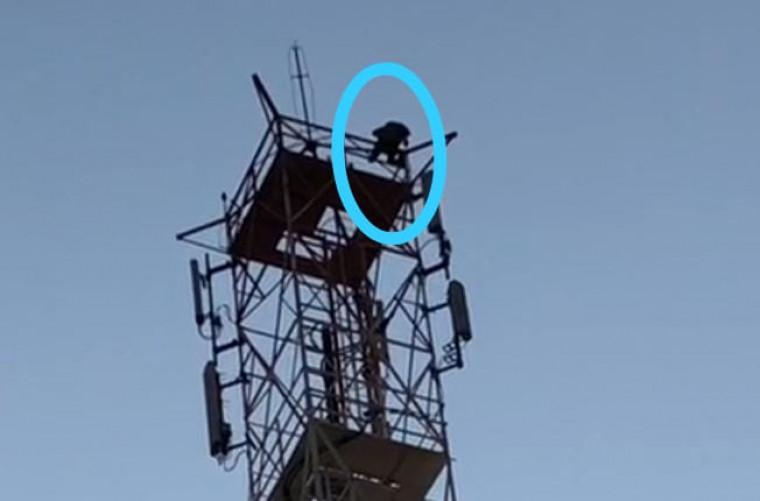 Jovem na torre