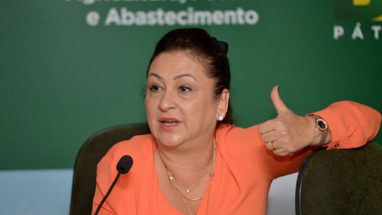 Kátia foi ministra da Agricultura no governo da presidente Dilma
