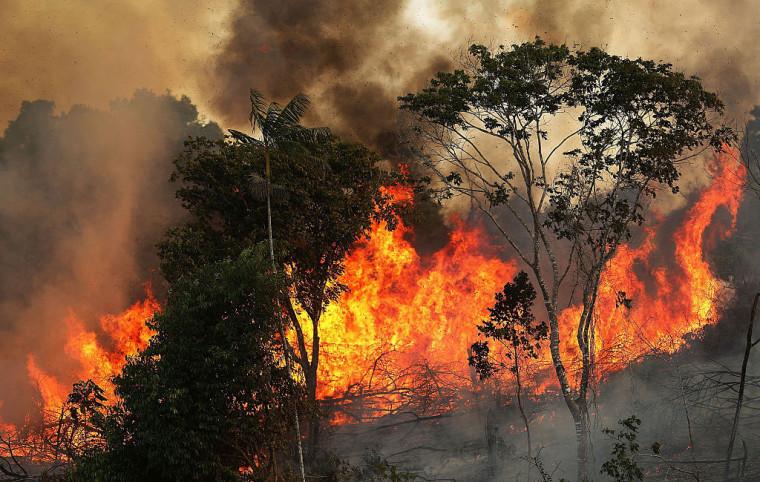 Levantamento foi feito em Palmas e nos 10 municípios com maior incidência histórica de queimadas