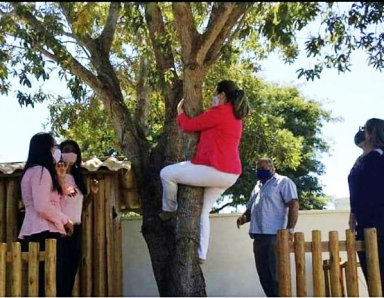 Prefeita Cinthia Ribeiro até subiu em árvore durante a semana