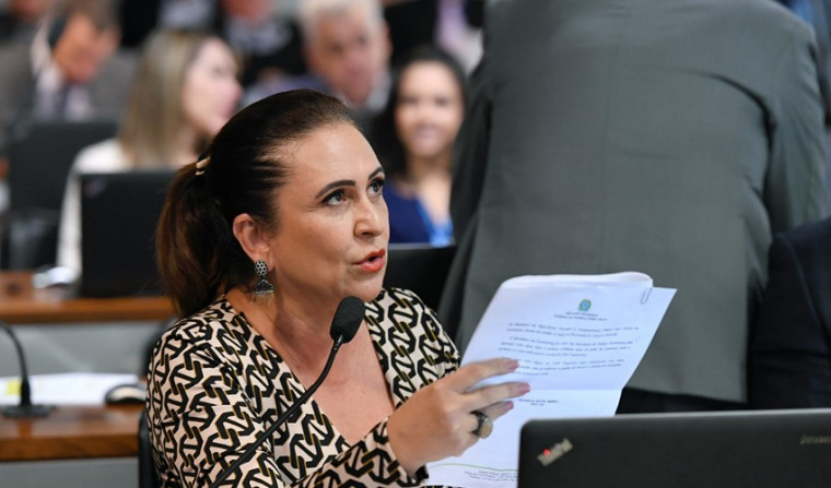 O relatório foi elaborado pela senadora Kátia Abreu (PDT-TO)