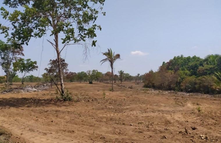 Área que já teria sido gradeada pelo trator da prefeitura