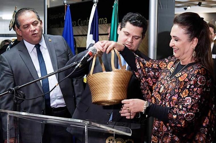 Gomes e Alcolumbre articularam contra a senadora Kátia Abreu