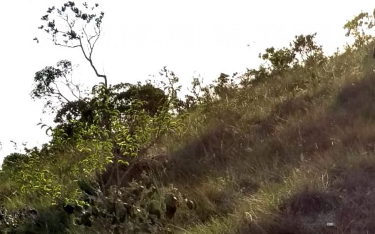 O corpo foi encontrado na entrada de mata ao lado do local de festa na Chapada dos Veadeiros, em Alto Paraíso de Goiás