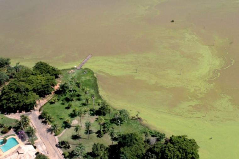 Manchas verdes no lago na região sul de Palmas