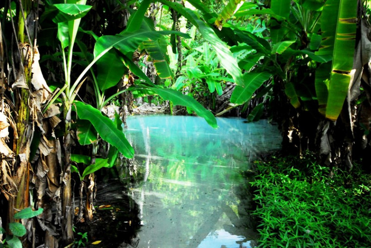 Fervedouros estão entre os atrativos naturais do Tocantins