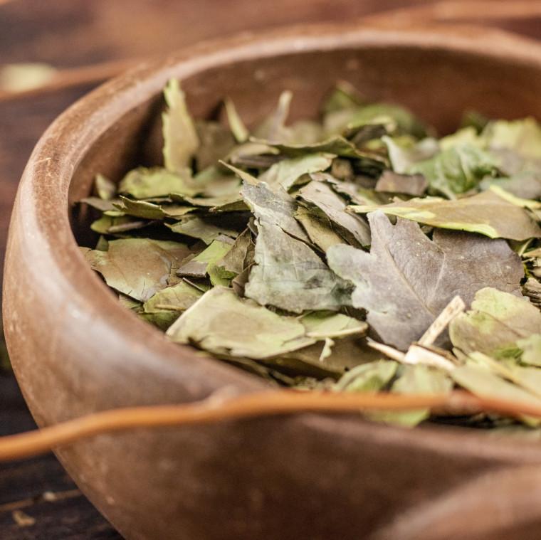 Chá verde ajuda a acelerar o metabolismo