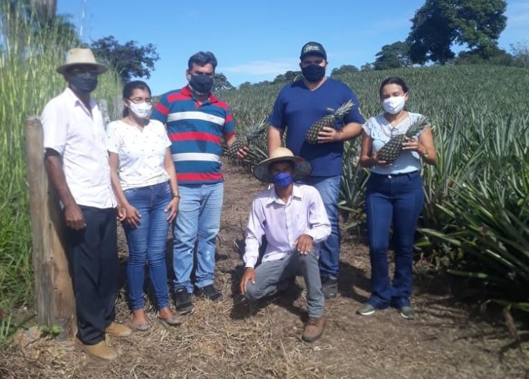Equipe gestora e professores visitam o plantio de abacaxi de Guilherme