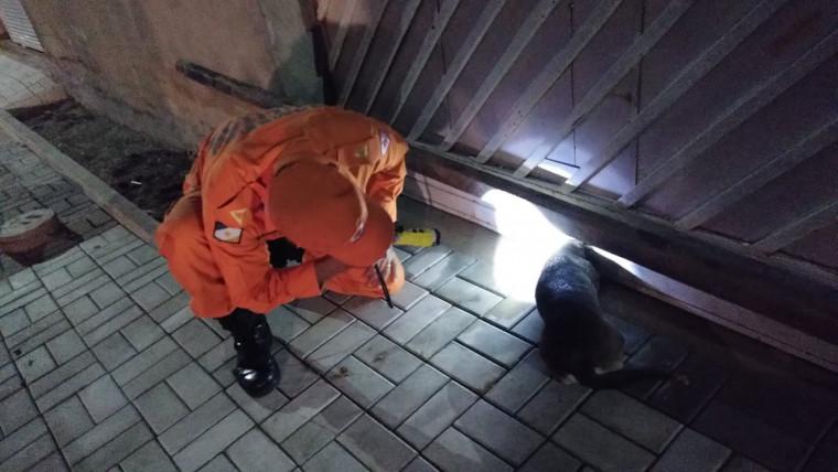O resgate ocorreu pela madrugada