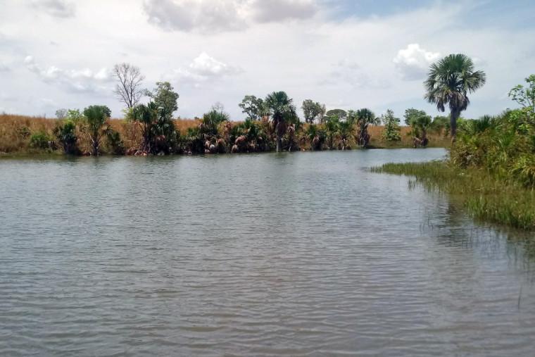 Córrego passa bem próximo ao lixão