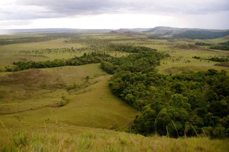 Relatório do Imazon chama atenção sobre valor irrisório de área pública no Tocantins.