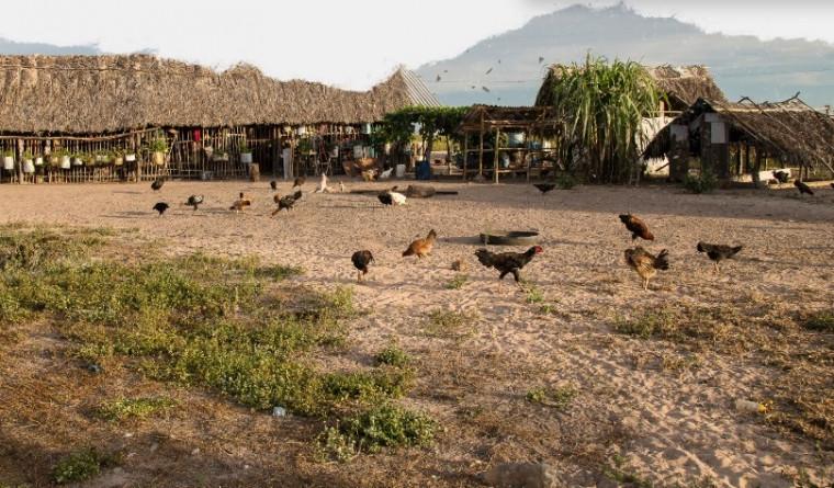 Comunidade vive em Barra do Ouro