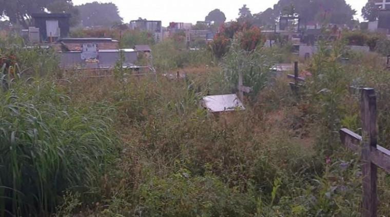 Cemitério tem cerca de 37 mil túmulos registrados
