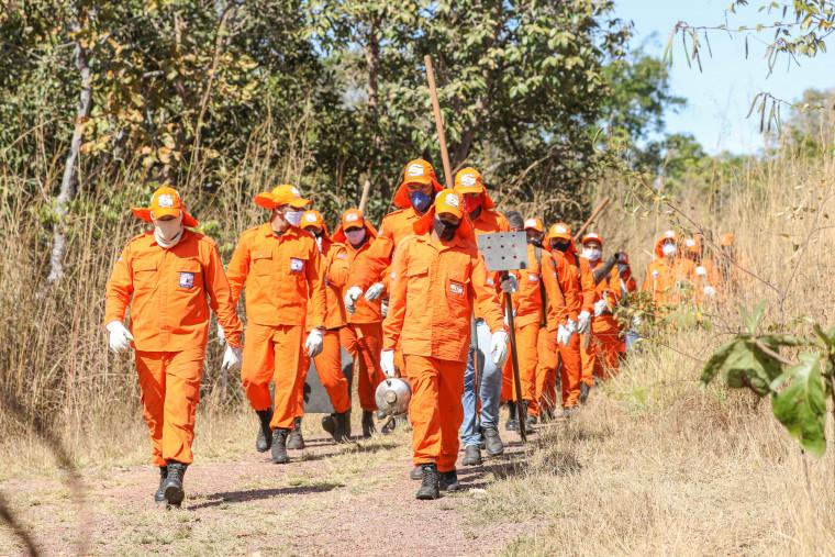 Os brigadistas vão atender oito cidades onde estão as unidades do CBMTO