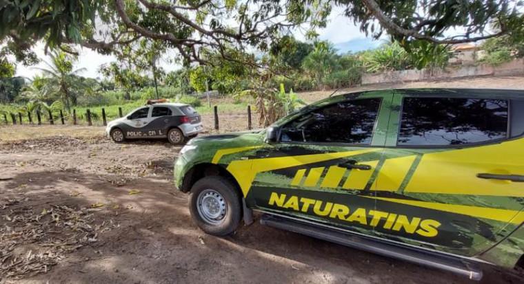 Polícia Civil e Naturatins atuaram na ação