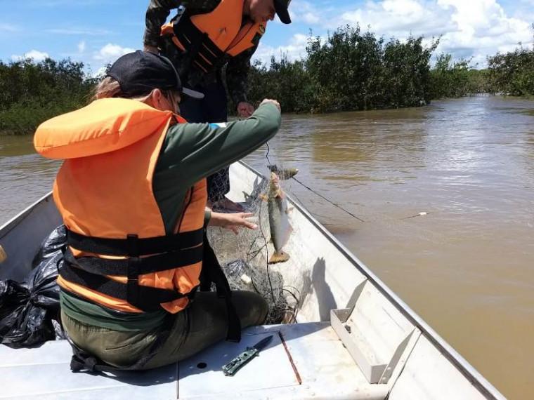 Os peixes que estavam vivos foram devolvidos ao rio